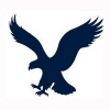 American Eagle Outfitters local listings