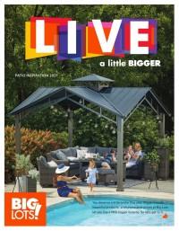 Big Lots - Live a little Bigger Ad for Spring/Summer 2021